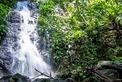 Malaysia Reisen | Wasserfall, Belum Rainforest