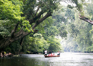 Malaysia Reisen | Taman Negara