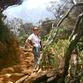 Malaysia Reisen | Besteigung Mount Kinabalu, Borneo