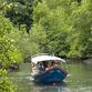 Malaysia Reisen | Bootstour durch Mangroven, Langkawi